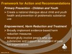 framework for action and recommendations2