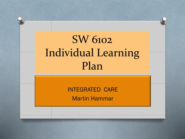 sw 6102 individual learning plan n.