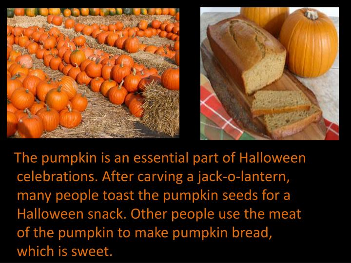 The pumpkin is an essential part of Halloween celebrations. After carving a jack-o-lantern, many people toast the pumpkin seeds for a Halloween snack. Other people use the meat of the pumpkin to make pumpkin bread, which is sweet.