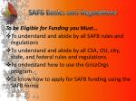 safb basics and regulations1