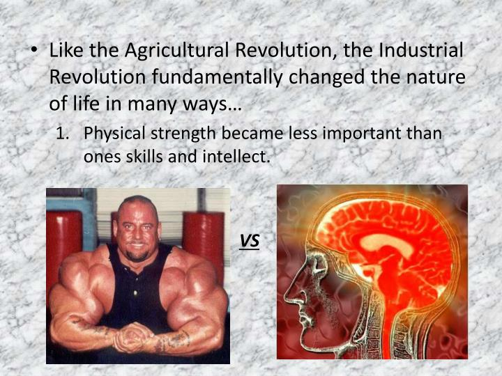Like the Agricultural Revolution, the Industrial Revolution fundamentally changed the nature of life in many ways…