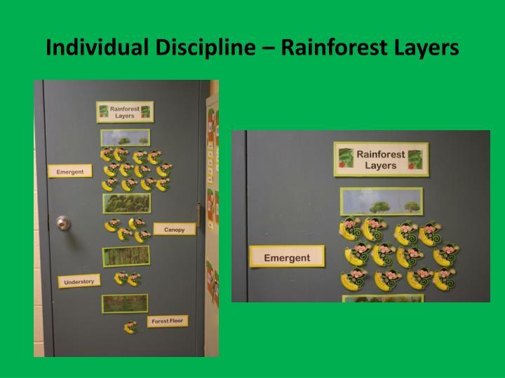 Individual Discipline – Rainforest Layers