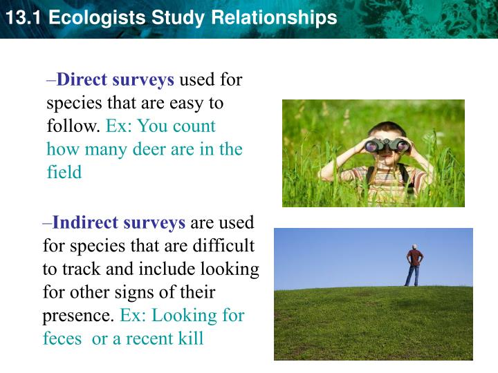 Direct surveys