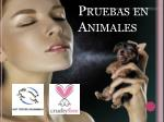 pruebas en animales