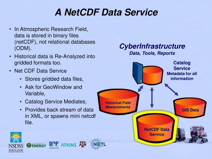 A NetCDF Data Service