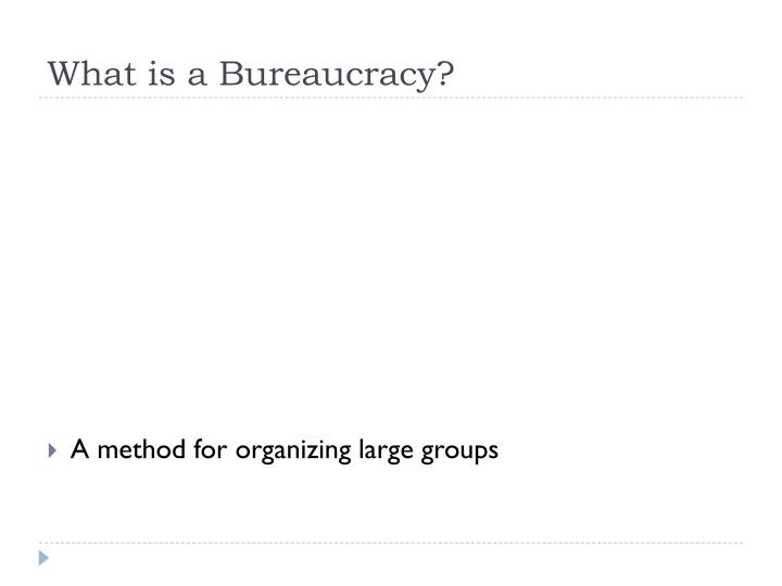 what is a bureaucracy n.