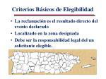 criterios b sicos de elegibilidad