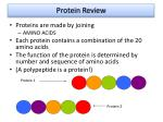 protein review