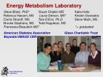 energy metabolism laboratory