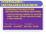 condensation dehydration reactions