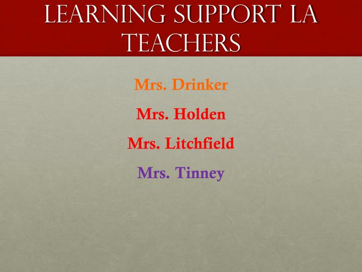 Learning support LA teachers