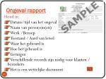 ongeval rapport