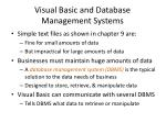 visual basic and database management systems