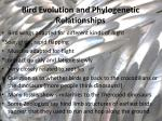 bird evolution and phylogenetic relationships