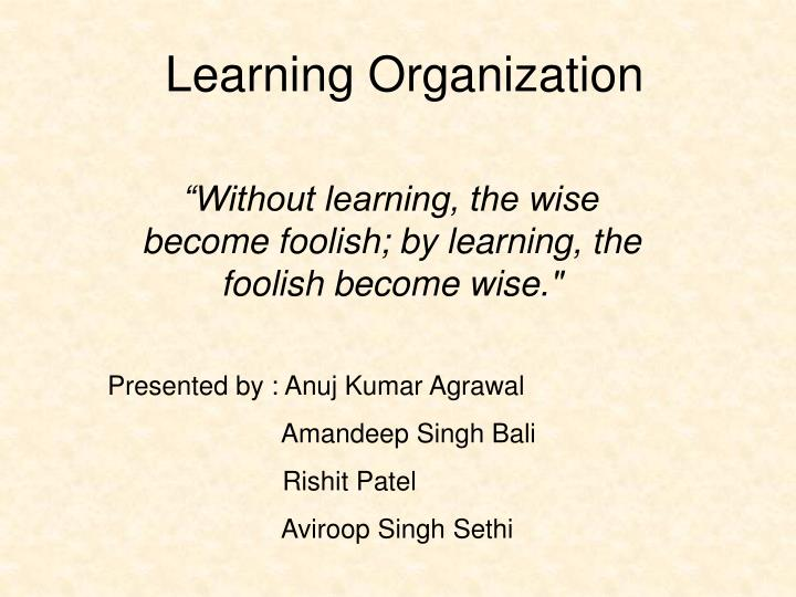 learning organization n.