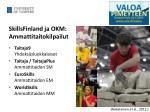 skillsfinland ja okm ammattitaitokilpailut