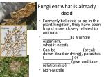 fungi eat what is already dead