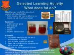 selected learning activity what does fat do