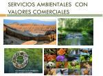 servicios ambientales con valores comerciales