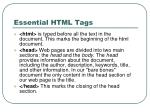 essential html tags1