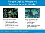poison oak poison ivy leaves of three let them be