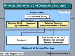 financial statements and ownership structure1