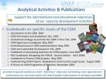 analytical activities publications