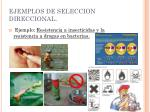 ejemplos de seleccion direccional