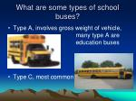 what are some types of school buses