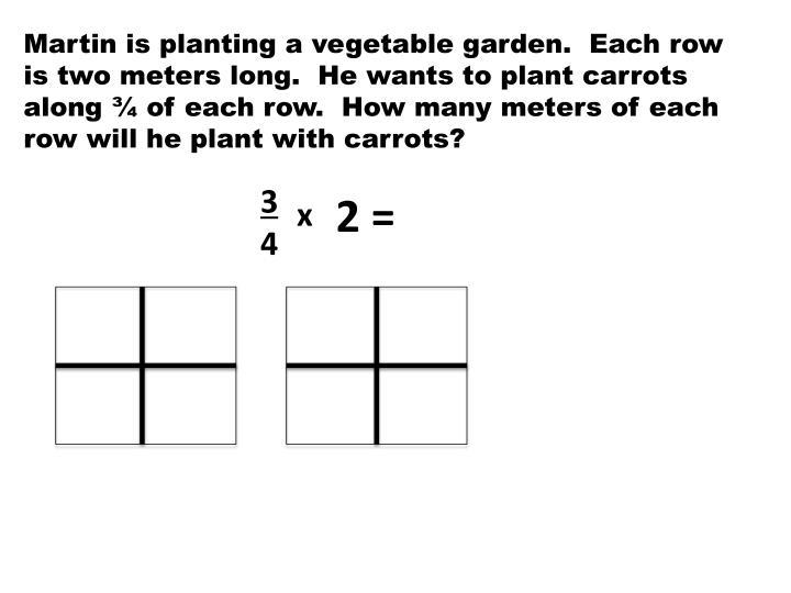 Martin is planting a vegetable garden.  Each row