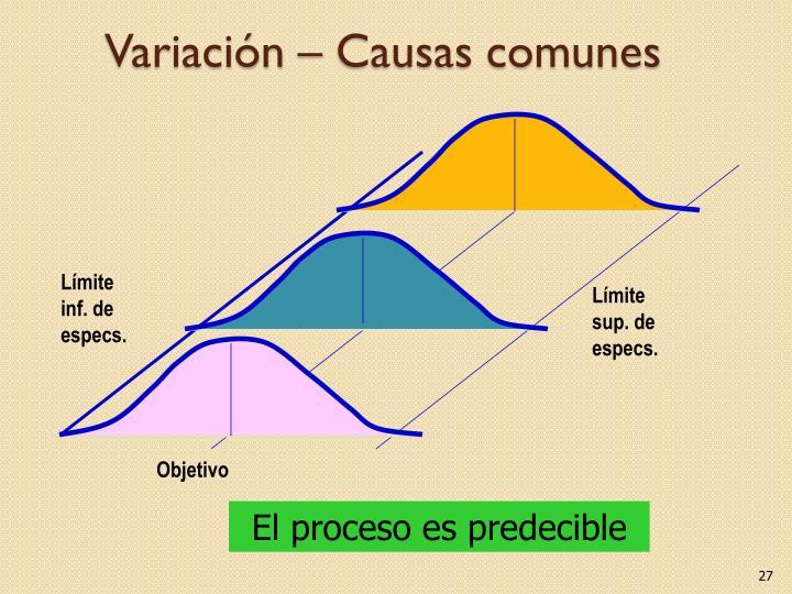 Variación – Causas comunes
