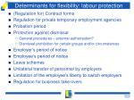 determinants for flexibility labour protection