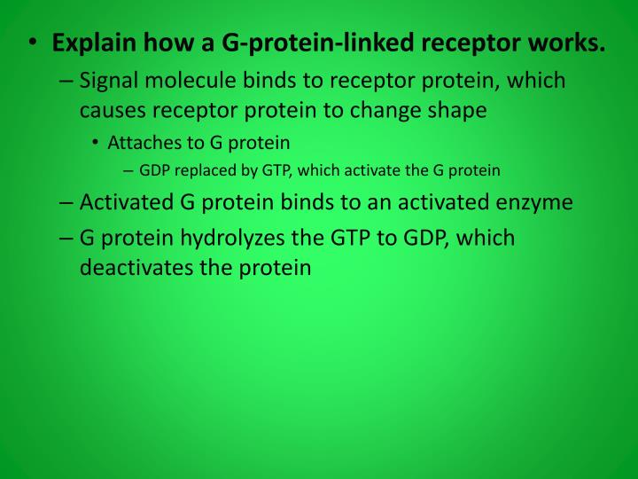 Explain how a G-protein-linked receptor works.
