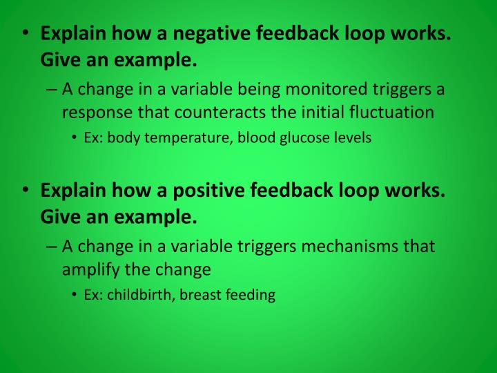 Explain how a negative feedback loop works. Give an example.