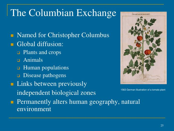the columbian exchange alludes to the Columbian exchange dbq how did culture in the americas change as a result of exploration what were the consequences of the columbian exchange.
