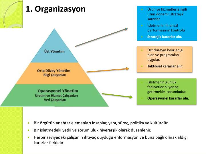 1. Organizasyon
