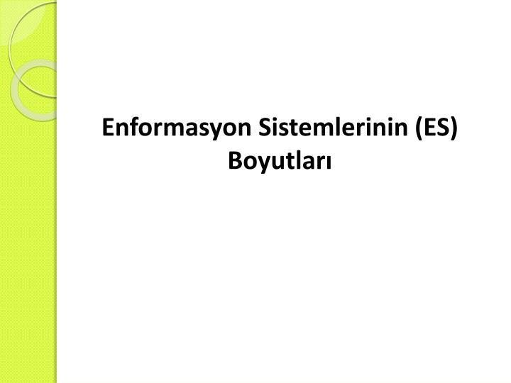 Enformasyon Sistemlerinin (ES)
