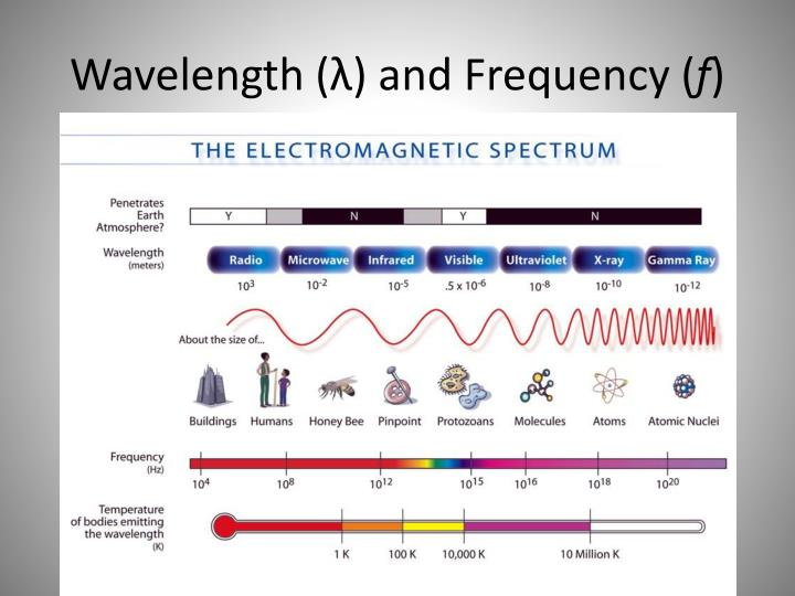 Wavelength (