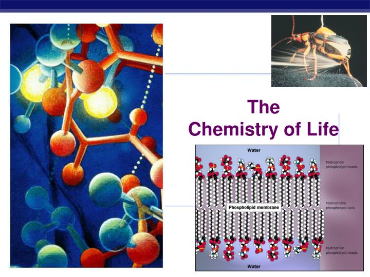 an overview of the chemistry science and its use in the daily life Founded in 2003, science news for students is an award-winning online publication dedicated to providing age-appropriate, topical science news to learners, parents and educators it's part of the science news media group, which has published its flagship magazine since 1922.