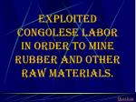 exploited congolese labor in order to mine rubber and other raw materials