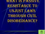 what is passive resistance to unjust laws through civil disobediance