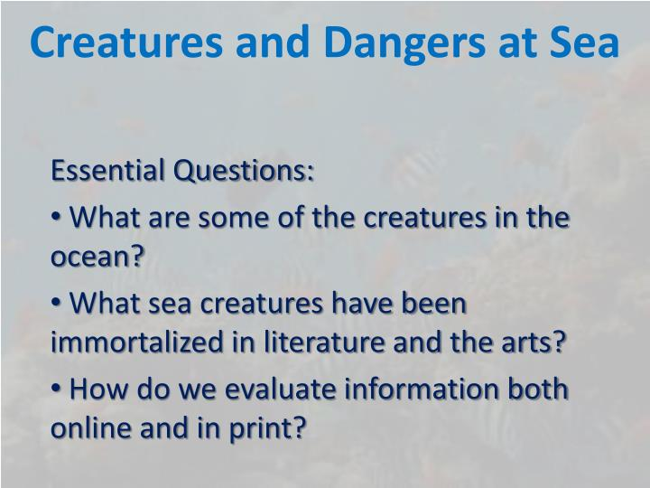 creatures and dangers at sea n.