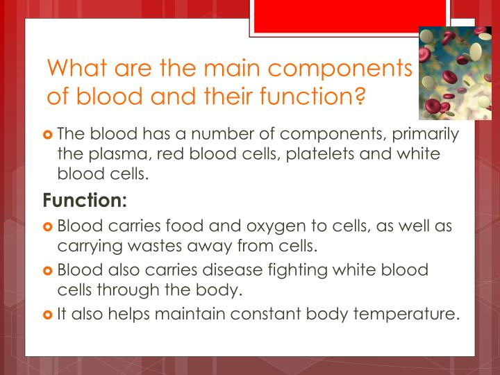 What are the main components of blood and their function