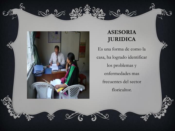 ASESORIA JURIDICA