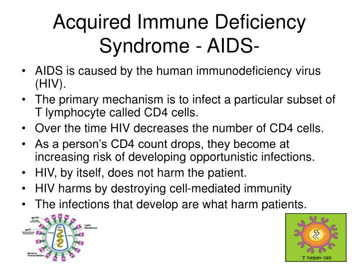 the acquired immune deficiency syndrome essay Good afternoon everyone today i would like to inform you all about hiv, human immunodeficiency virus, and aids, acquired immune deficiency syndrome statistics show that about 35% of aids cases have been in the age group of 20-29.