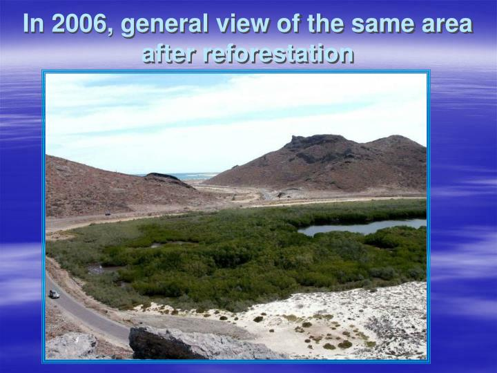 In 2006, general view of the same area after reforestation