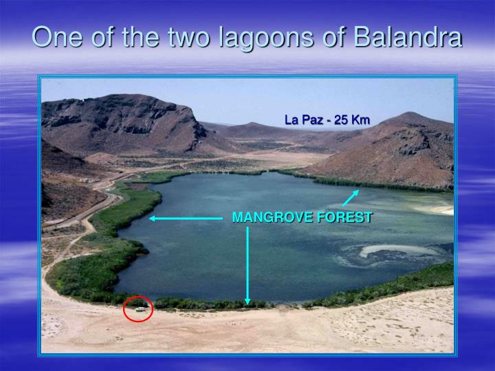 One of the two lagoons of balandra