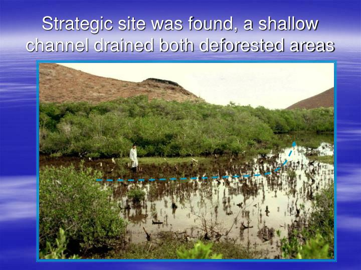 Strategic site was found, a shallow channel drained both deforested areas