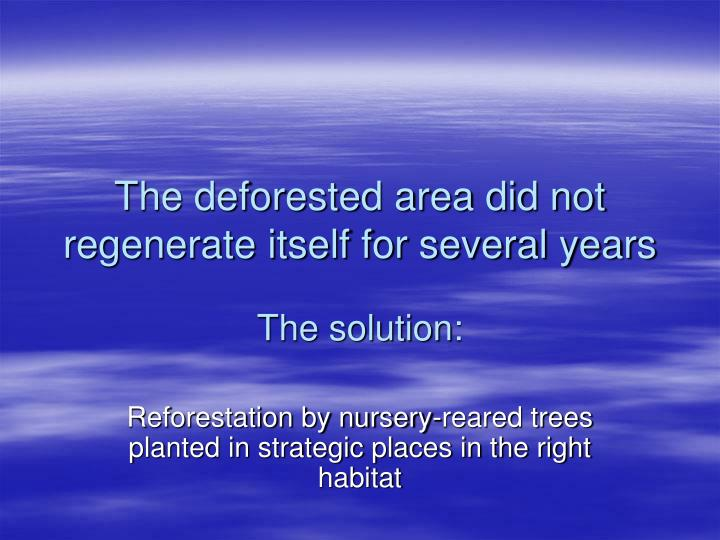 The deforested area did not regenerate itself for several years