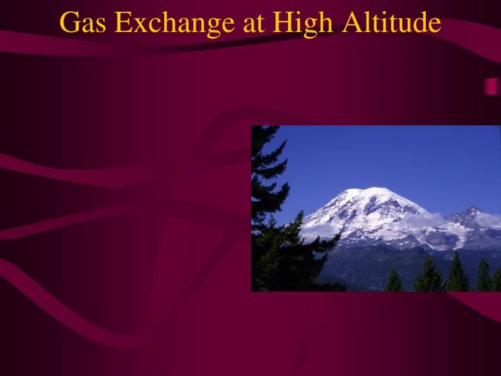 Gas Exchange at High Altitude